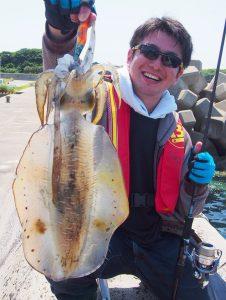 エギングでアオリイカ好釣!(5月29日)