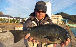 初釣りの良型クロ(1月3日)